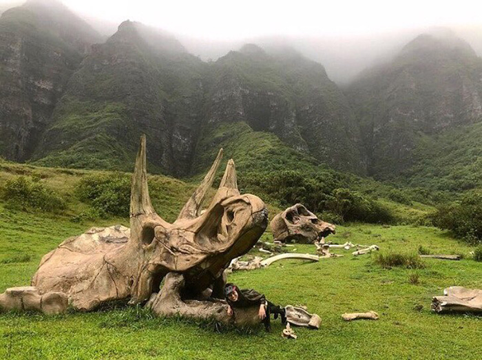 Movie Props for Jurassic World & Kong